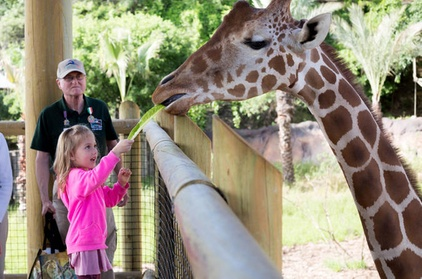 San Antonio Zoo General Admission 5e170770-b587-449f-8ffe-8569b16d28fa