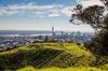 Cultural Walking Tour on Mount Eden Auckland