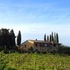 Tour privato delle cantine di San Gimignano, con degustazione di vi...