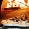 North End Pizza Tour