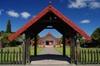 Tauranga Shore Excursion: Rotorua Te Puia Geothermals plus Hells Gate