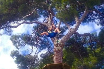 Entrada al Forestal Park Mallorca