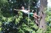 AdventureTerra LLC - Seattle: Canopy Tree Climbing at Deception Pass State Park