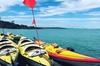Auckland Rangitoto Island Guided Sunset Kayaking Tour
