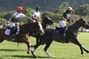Honolulu Polo Game with Stables Tour and VIP Seats plus Private Isl...