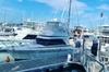 5 Hour Reef Fishing Charter - Luxury Cruiser