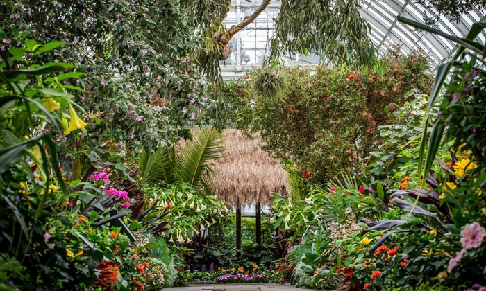 New York Botanical Garden - Up To 30% Off - Bronx, NY | Groupon