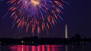 National Ferry Fleet : Cherry Blossom Fireworks Cruise at National Ferry Fleet