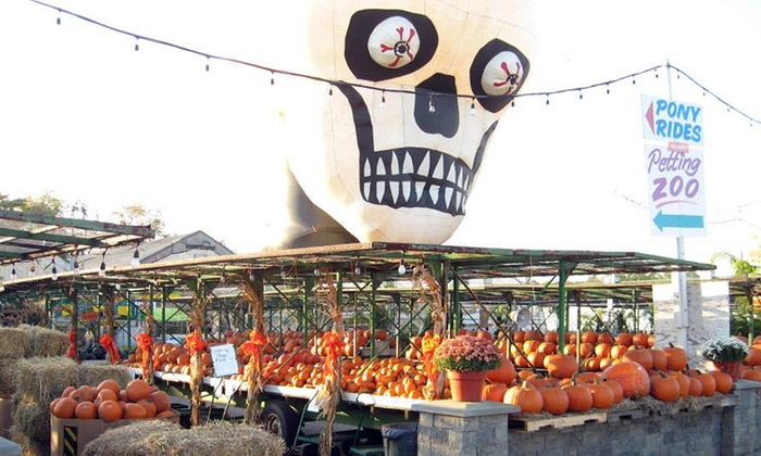 A. Casola Farms - Holmdel: Fall Fest at A. Casola Farms at A. Casola Farms
