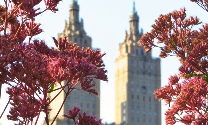 Central Park - Pulitzer Fountain - New York: Central Park Photography Walking Tour