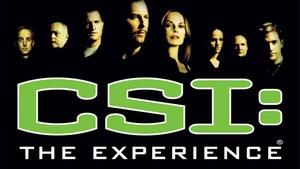 MGM Grand Hotel & Casino: CSI: The Experience at MGM Grand at MGM Grand Hotel & Casino