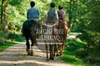 Horse Riding Near London