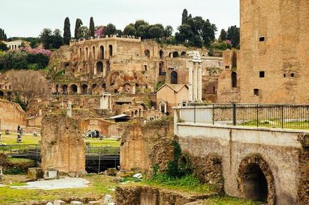 Deal Esperienze Groupon.it Tour privato del Colosseo e del Foro Romano con ingresso saltafila