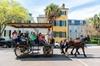 Daytime Horse-Drawn Carriage Tour of Historic Charleston