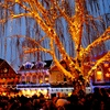 Snow Bus to Leavenworth's Tree Lighting Festival