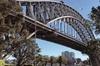 Sydney & Bondi Essentials Half Day Private Tour