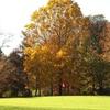 Online Booking - Round of Golf at Cream Ridge Golf Course