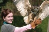 1 Hour Falconry Experience
