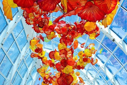 Collections cafe at chihuly garden and glass seattle wa - Chihuly garden and glass groupon ...
