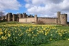 Borders and Alnwick Castle Tour from Edinburgh