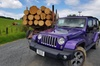 Private Jeep Expedition from Bay of Islands