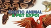 Merced County Fairgrounds - Sterling Ranch: Merced Pet Expo - Sunday April 9, 2017 / 10:00am-4:00pm