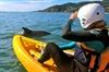 Byron Bay Combo: Hinterland Tour Including Minyon Falls and Kayakin...