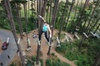 Adrenalin Forest Obstacle Course in Christchurch