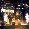 Kiss Tribute Strutter