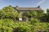 Beatrix Potter - Half Day - Up to 4 People