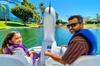 Swan Boat Rental at Rainbow Lagoon