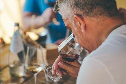 Sconto Enogastronomia & Locali Groupon.it Tour di degustazione del vino Amarone da Verona