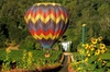 Experience our Thrilling Napa Hot-Air Balloon Ride over California ...
