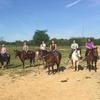 Memphis Trail Ride by Horseback