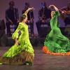 Compañia Flamenca José Porcel: Flamenco Fire: