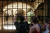 Visita privada: Casco antiguo de Palma de Mallorca