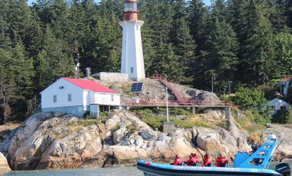 image for Vancouver City and Seals Scenic Boat Tour