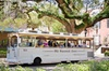 Savannah Trolley and Historic Walking Tour Combo