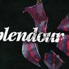 """Splendour"""