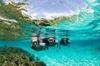 Sydney 3-Hour Snorkeling Tour