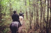 One Hour Horse Trek