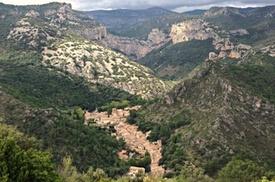 (montpellier) Excursion œnologique en petit groupe dans le Languedoc avec visite …