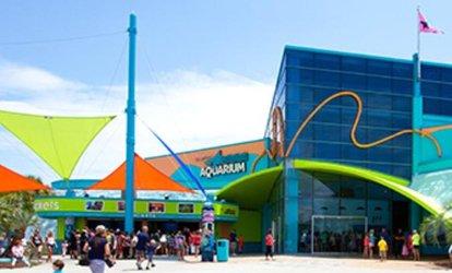 Myrtle Beach Aquarium Groupon