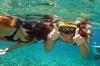 Voyage de plongée avec masque et tuba avec le beau centre de plongé...