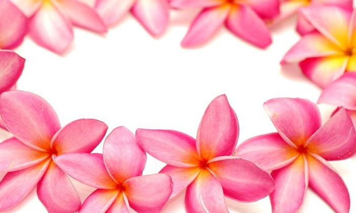 hawaii flower lei  hawaii flower lei  groupon, Beautiful flower