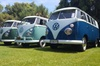 Classic Volkswagen Kombi Winery Tour