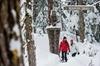 Canadian Wilderness Adventures - Chicago: Whistler Snowshoe Adventure