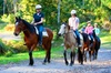 Horse Riding Tour at Glenworth Valley Outdoor Adventures