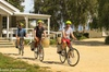 Self Guided Martinborough Wineries Bike Tour