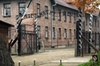 Auschwitz-Birkenau All Inclusive Guided Tour From UK